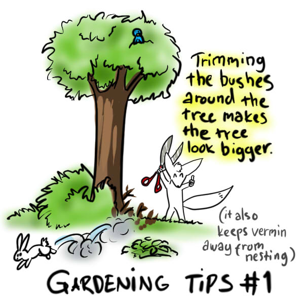 Random Thoughts Gardening Tips 1